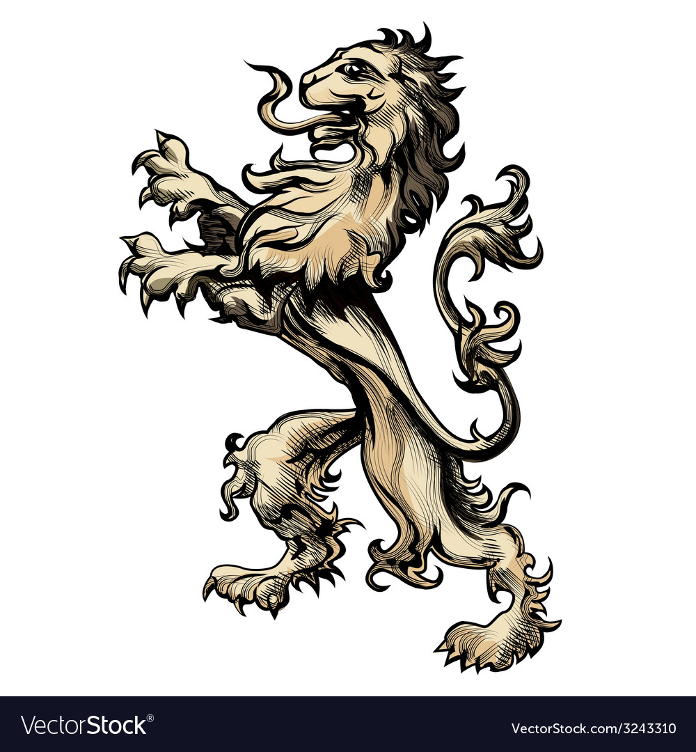 Heraldry lion drawn in engraving style vector image