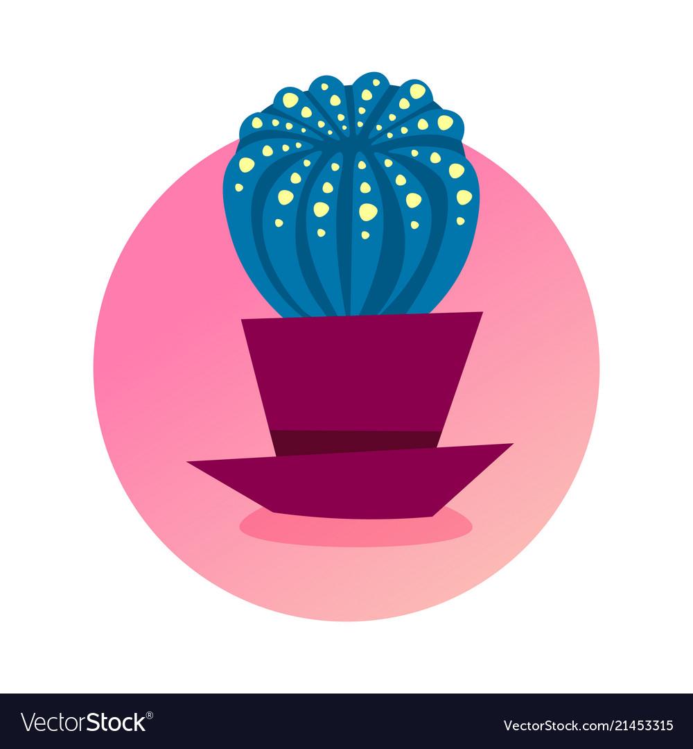 Cactus icon domestic plant concept isolated round