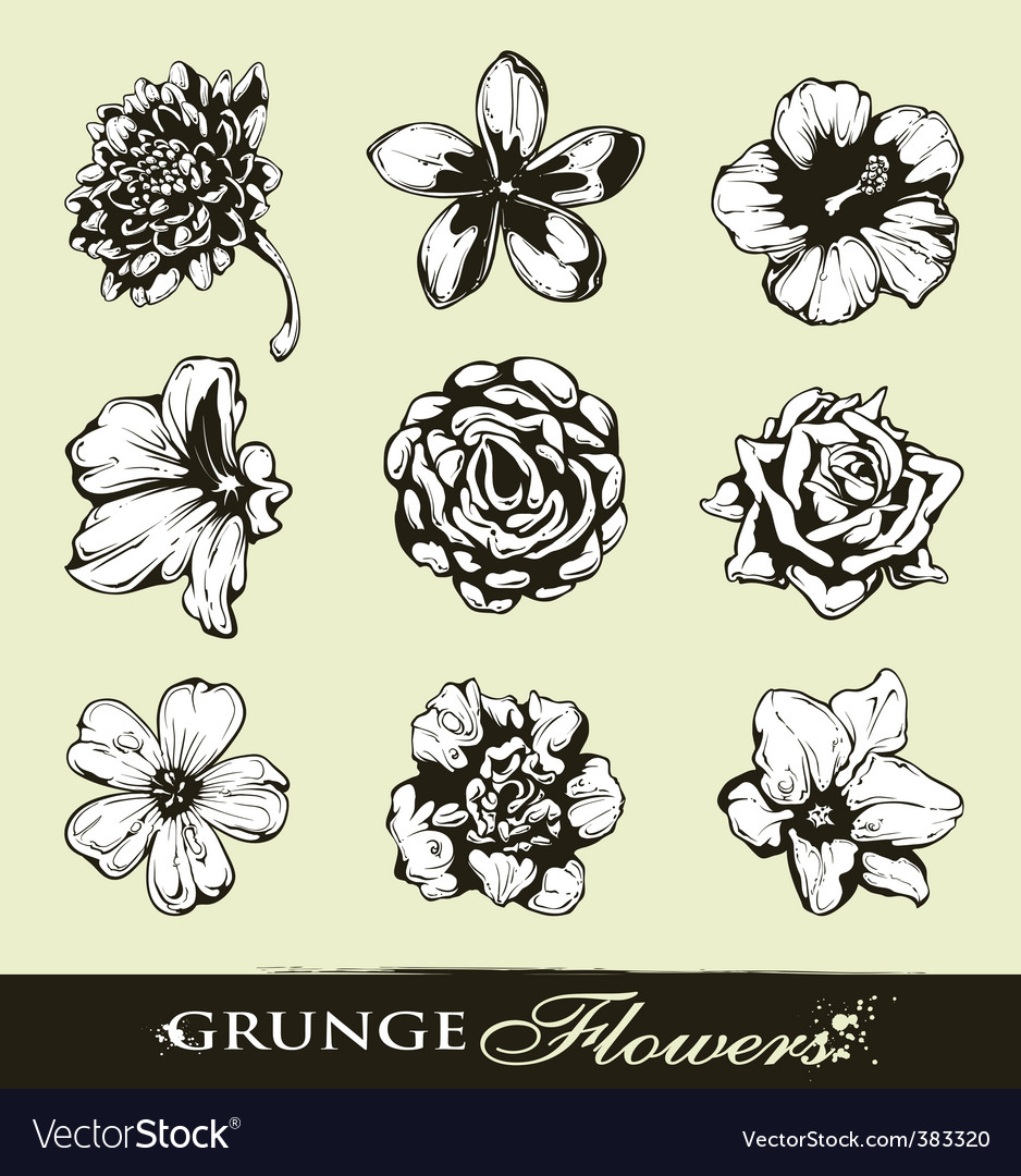 Set of grungy flowers vector image
