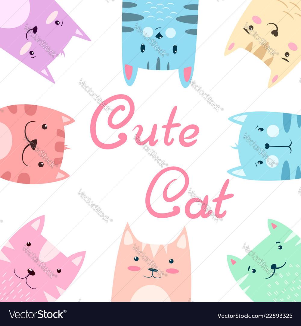 Cute pretty set cat kitty