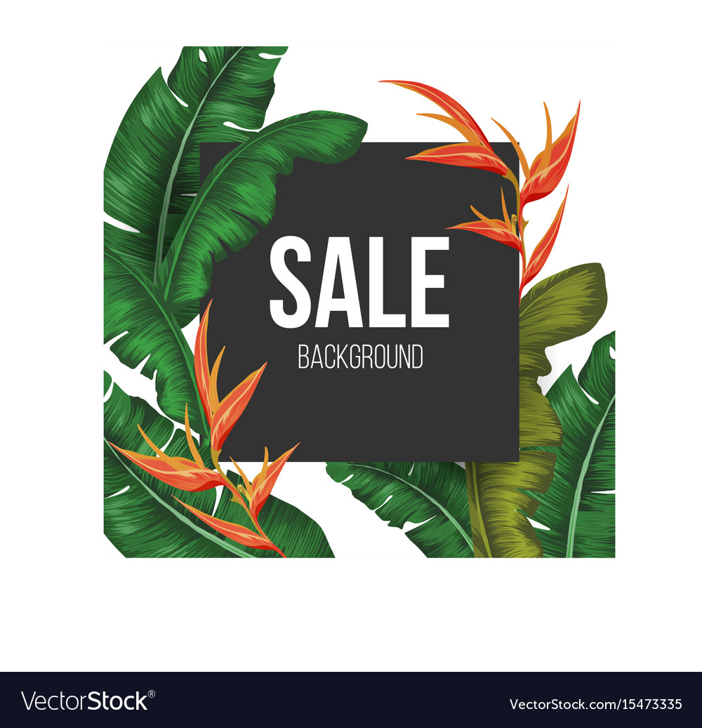 Sale background with tropical
