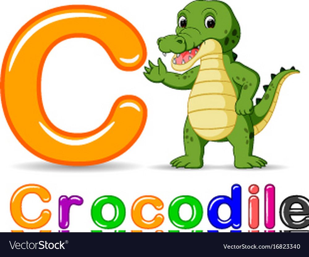 Alphabet c with crocodile cartoon