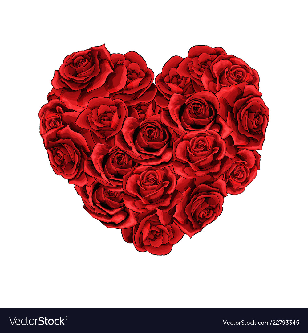 Valentines Day Red Roses Heart Filled Isolated Vector Image