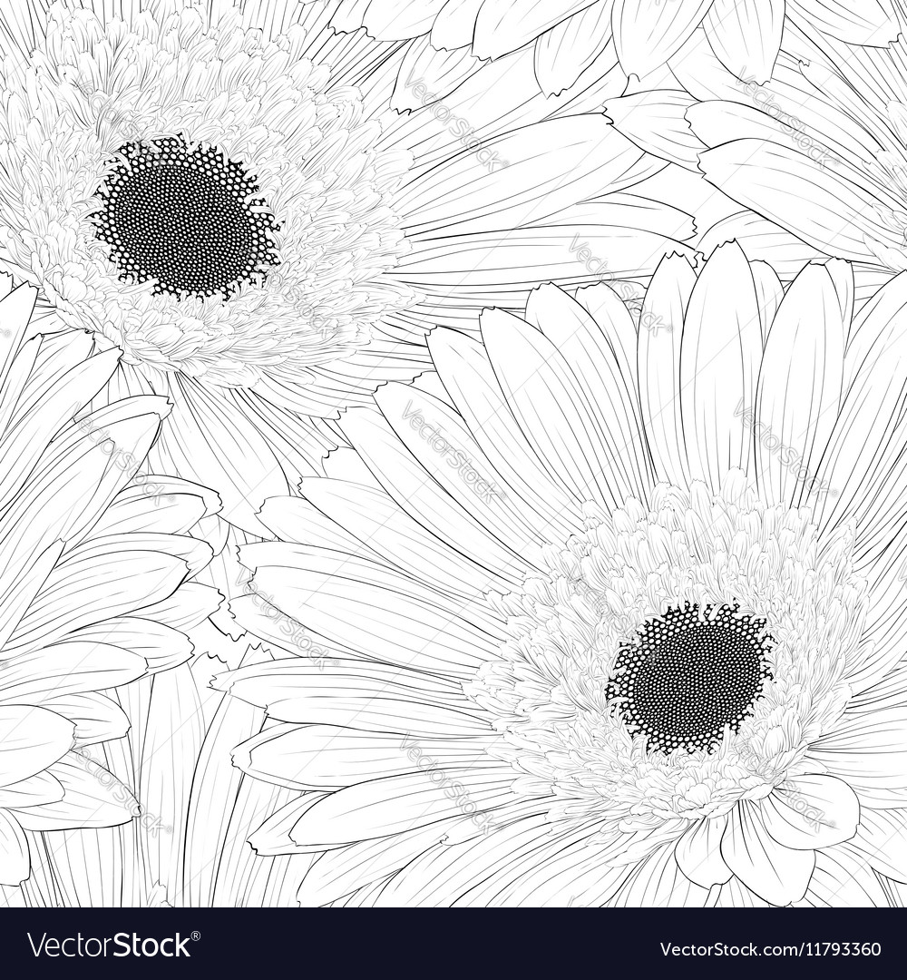Black and white seamless background with flowers