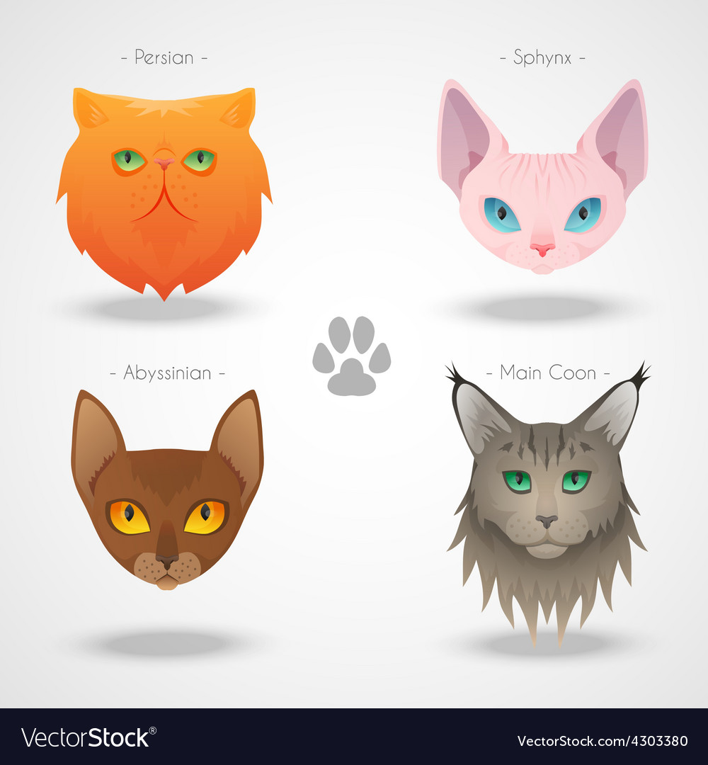 Cat Breeds icons
