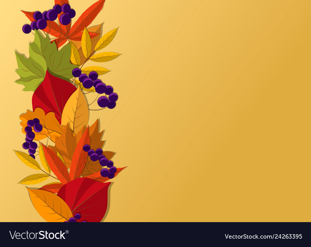 Autumn background with fall leaves border design