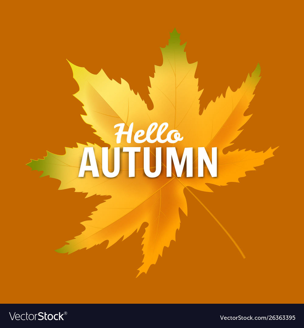 - Banner Hello Autumn Leaf Template Background Vector Image