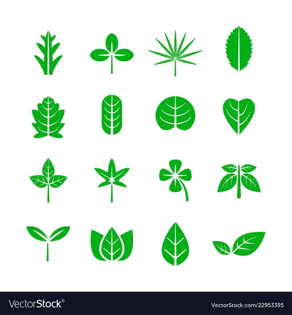 Leaf icon nature and environment concept