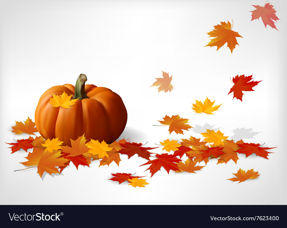 Autumn and pumpkins white background