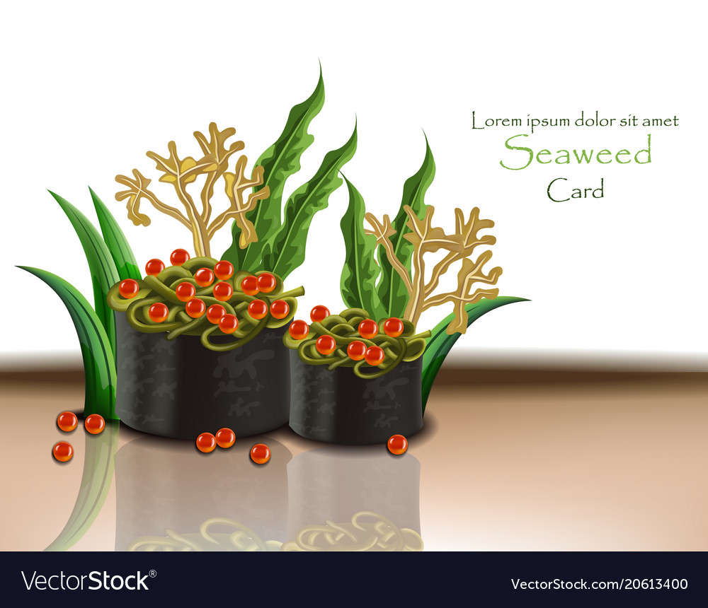 Seaweed and caviar realistic 3d vector image