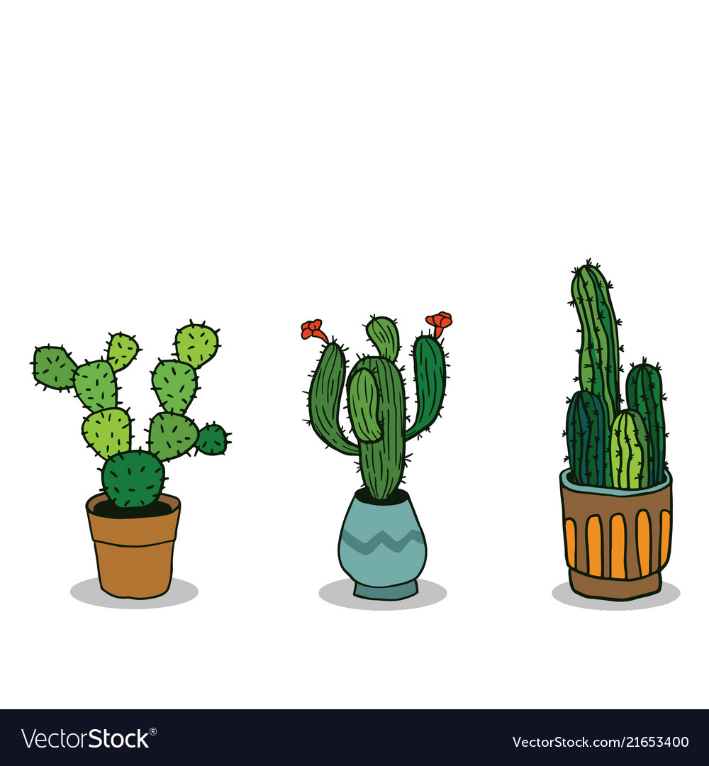 Set of three hand drawn cactus in pots