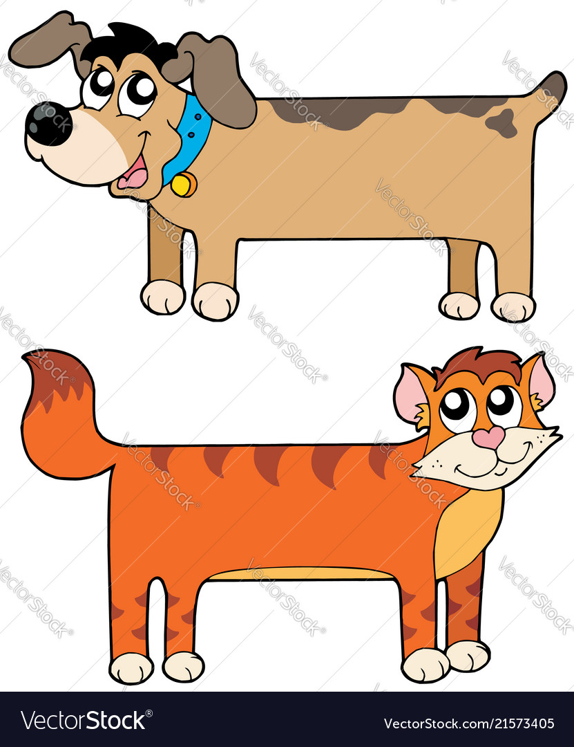 Flat cat and dog