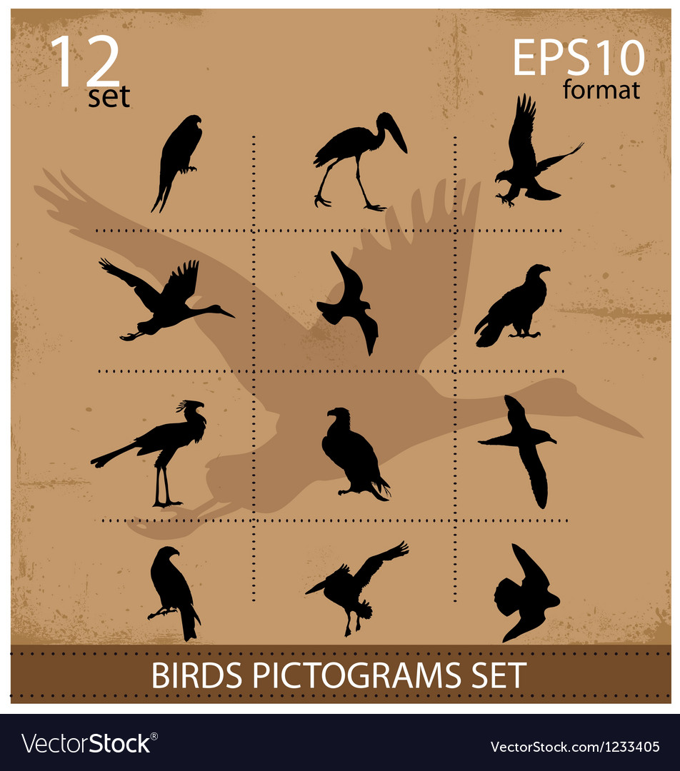 Set Of Silhouettes Birds Symbols Royalty Free Vector Image