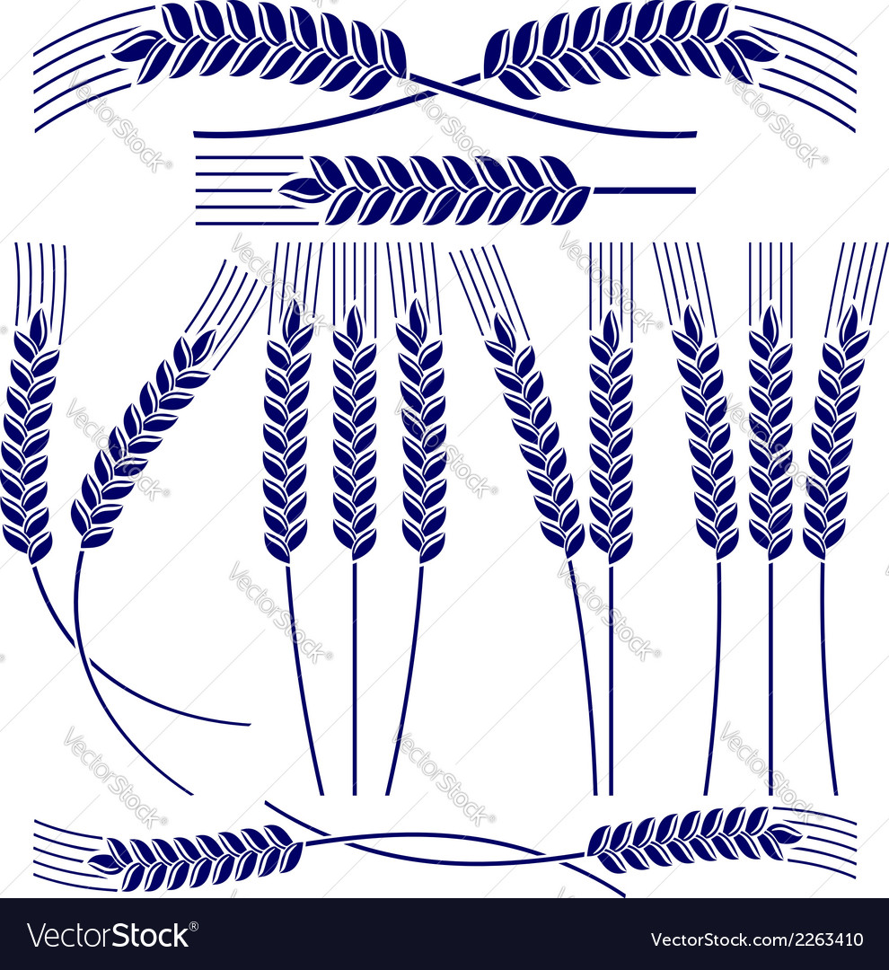 Ears of wheat and rye icon set vector image