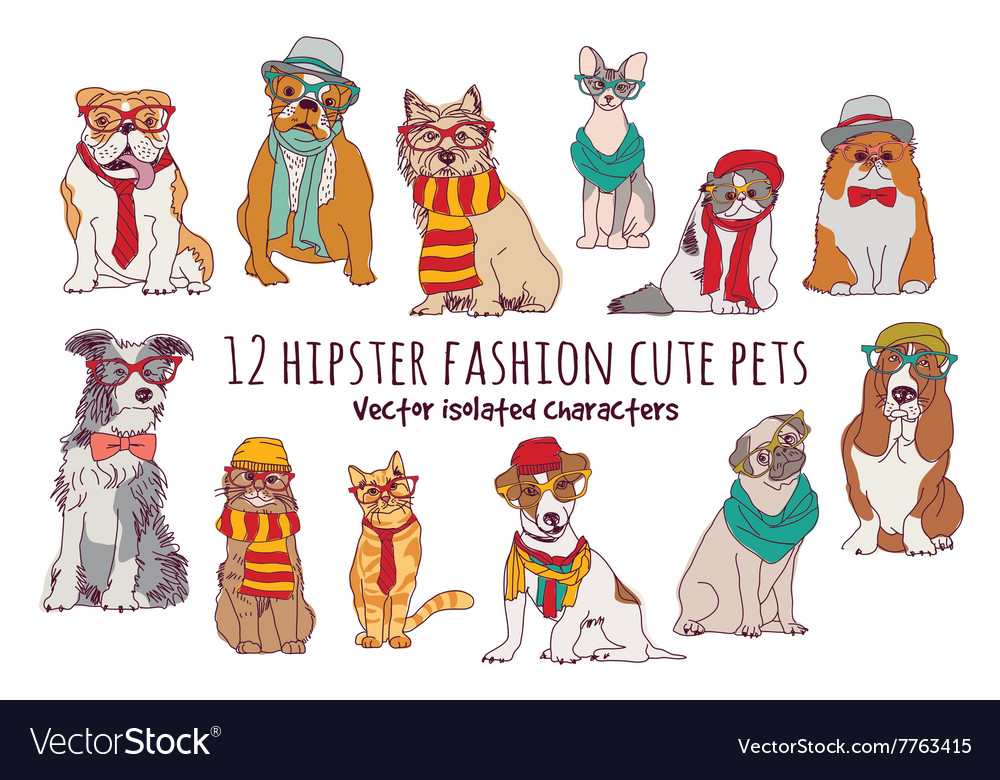 Cute cats and dogs fashion hipster isolated pets