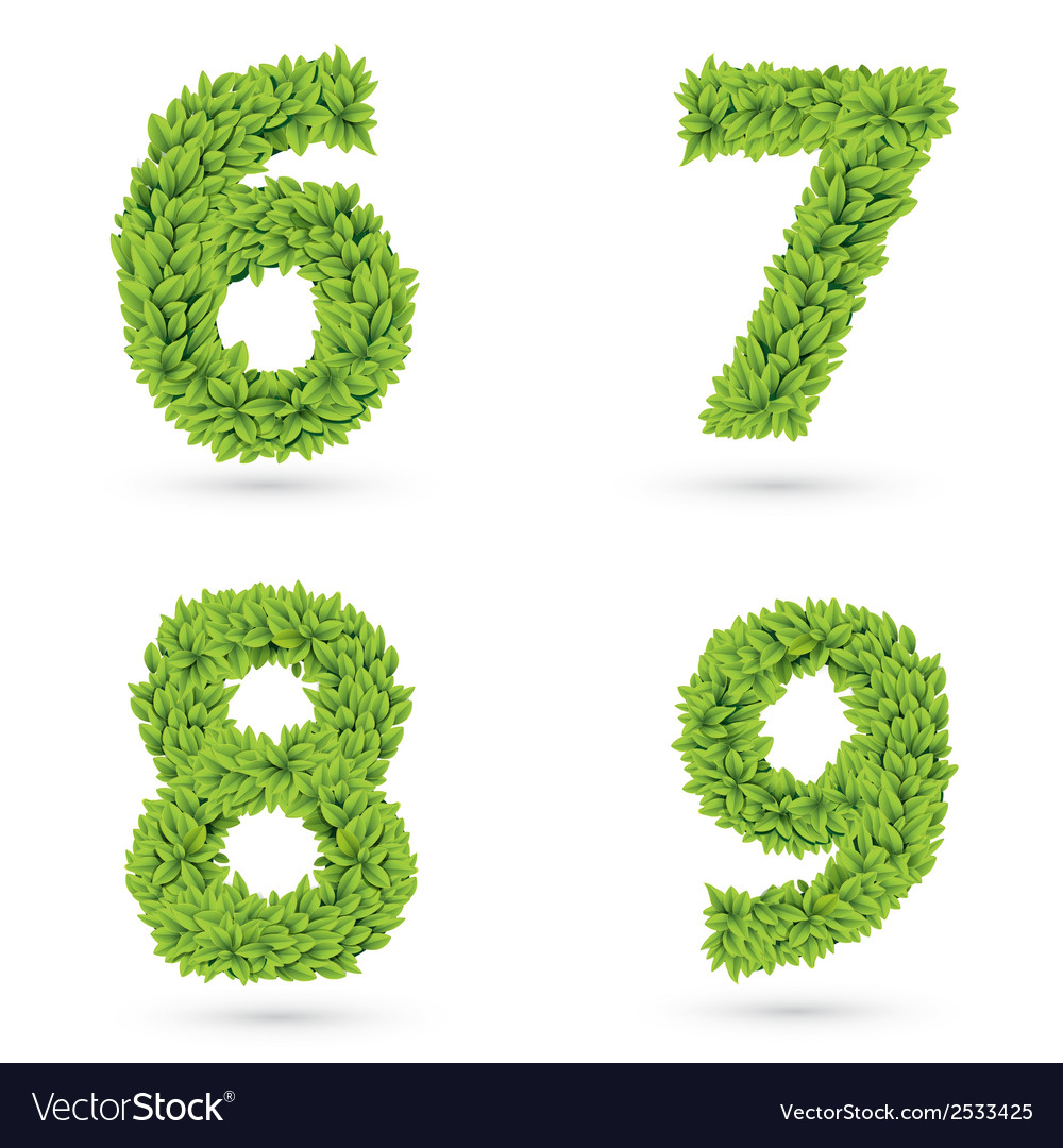 Numbers of green leaves collection