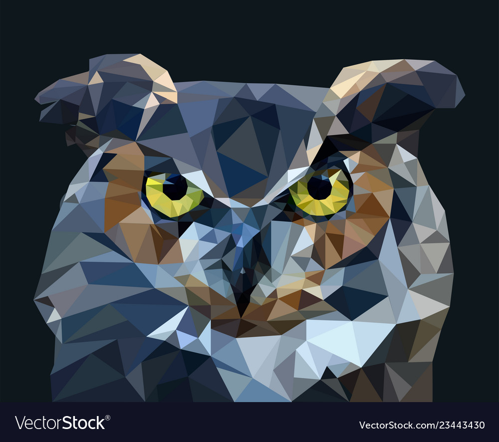Owl in low poly style