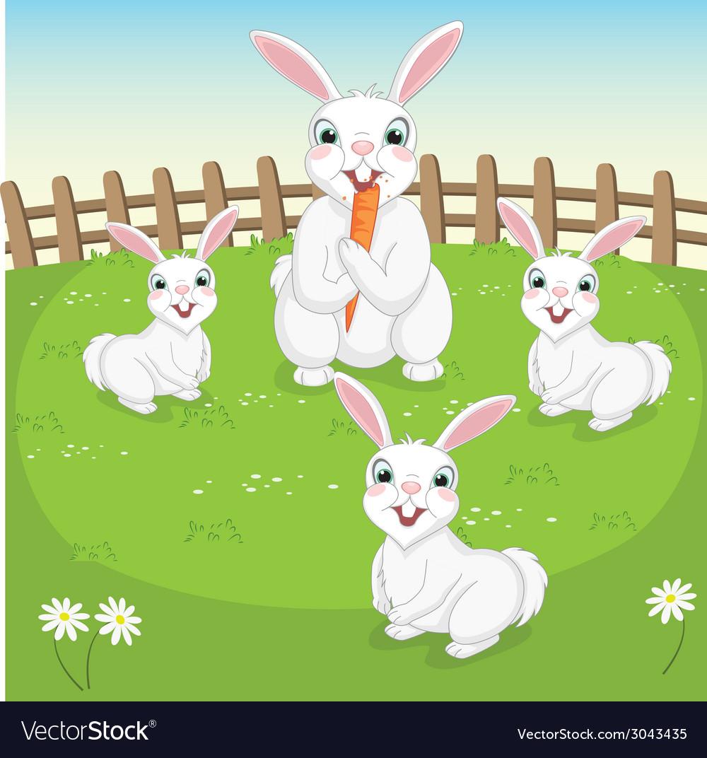 Of Cute Rabbits