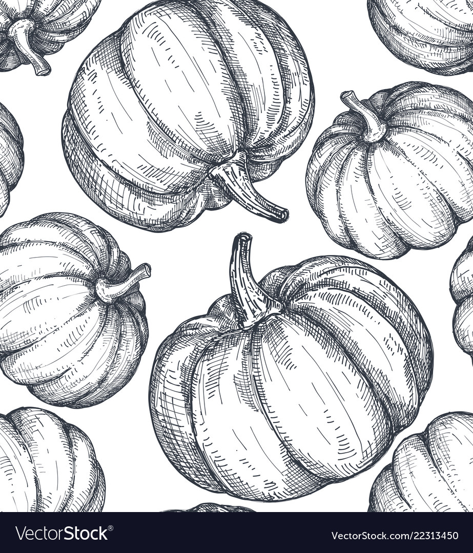 Hand drawn sketched pumpkin seamless