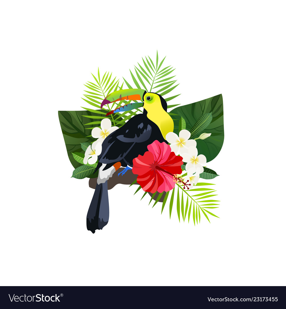 Tropical bird composition