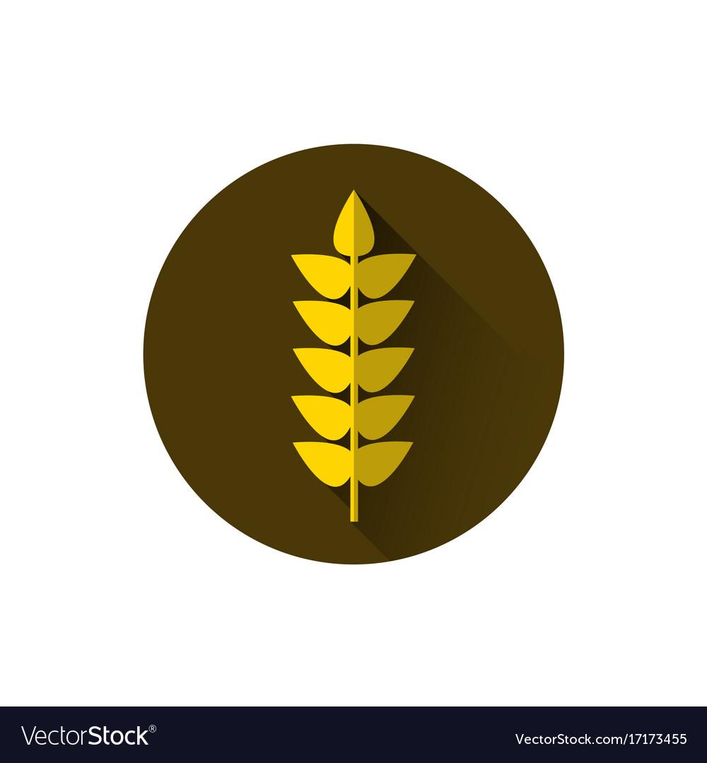 Wheat spike icon ripe crop grain