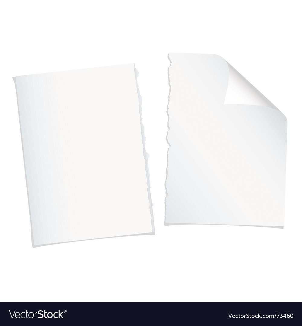 Single page torn blank vector image