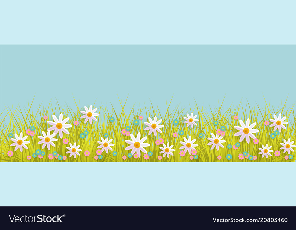 Spring background with grass and flowers border