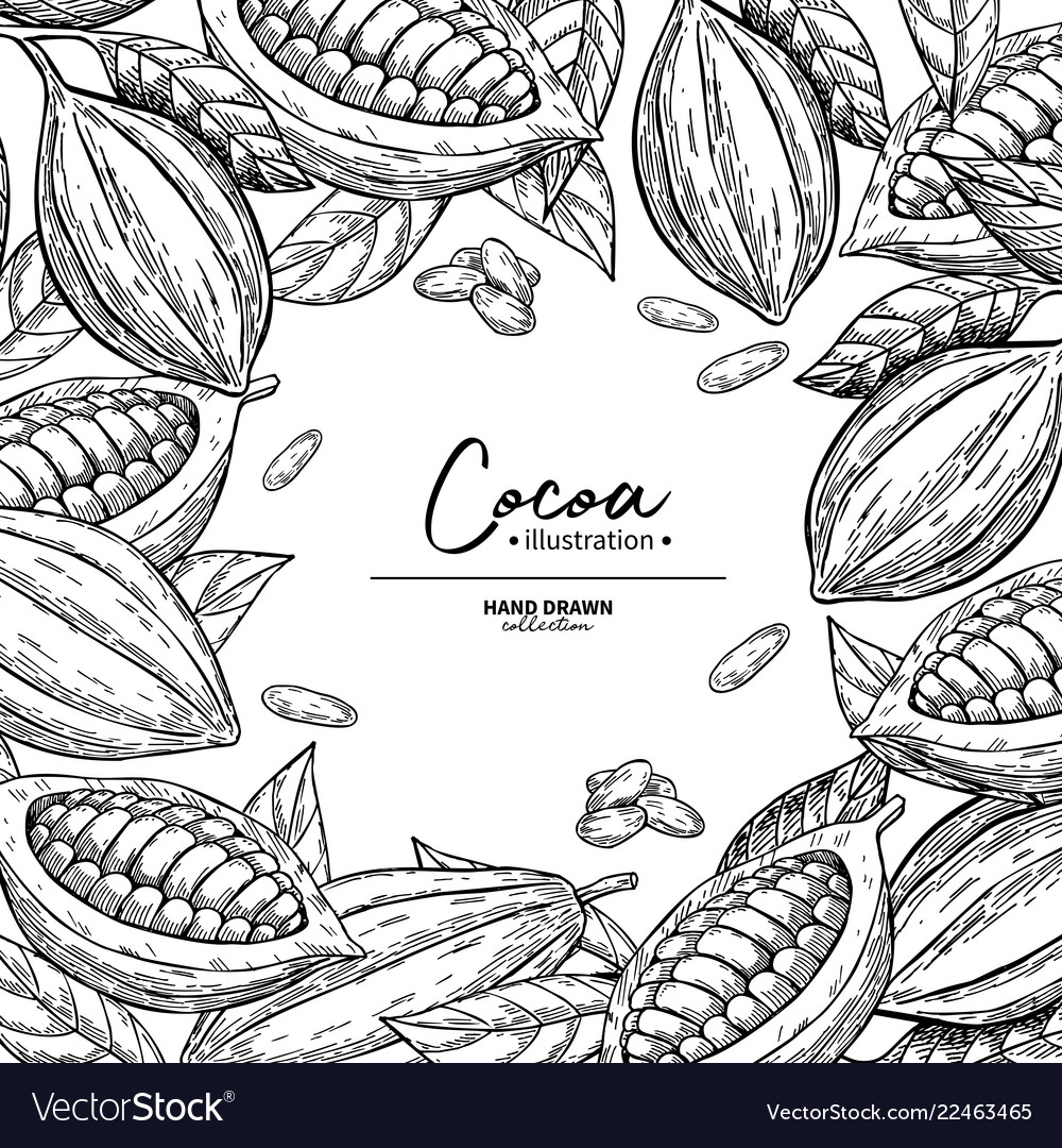 Cocoa frame superfood drawing template