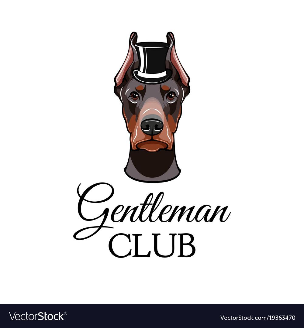 Doberman pinscher dog with top hat