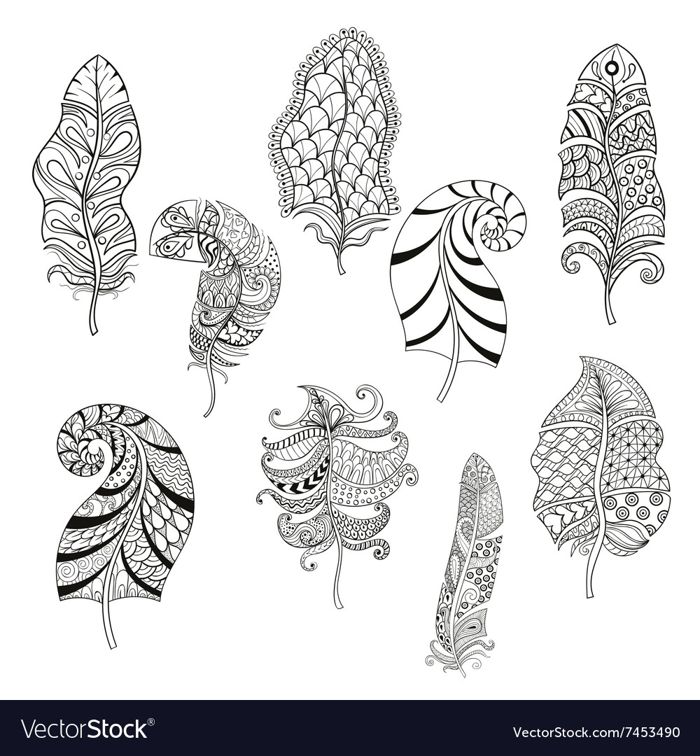 Zentangle Stylized Nine Feathers For Coloring Page