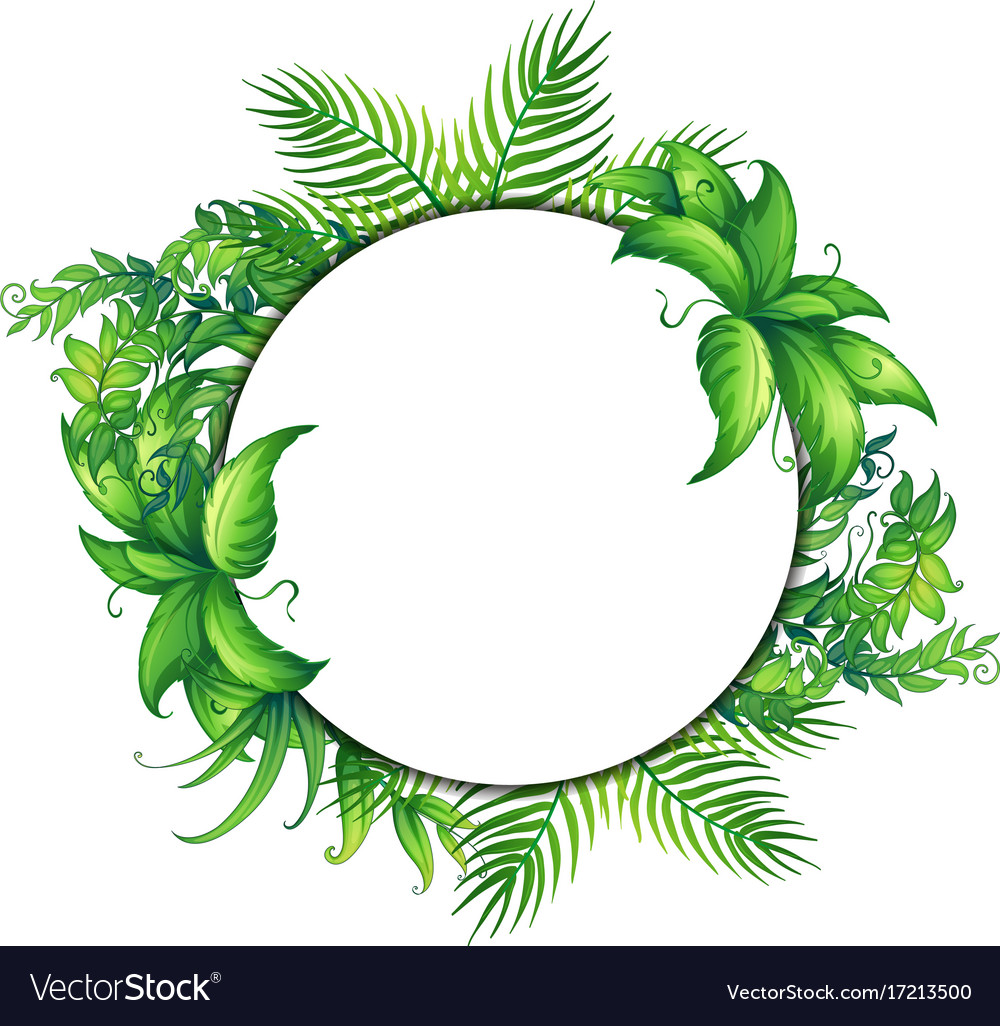 border template with green leaves royalty free vector image