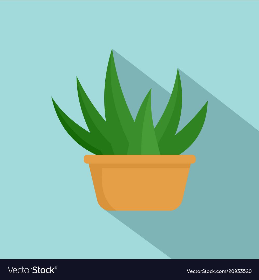 Aloe room plant icon flat style
