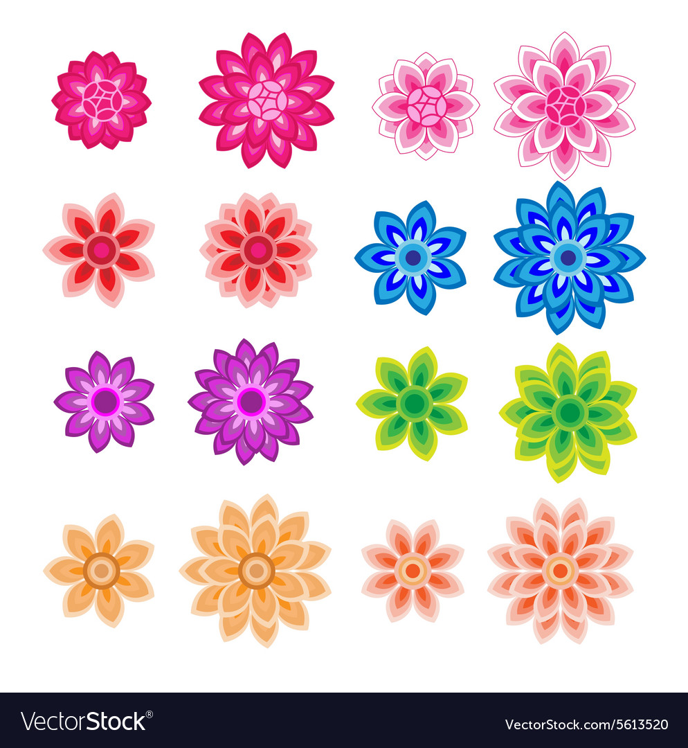 Flower petals overlapping colorful
