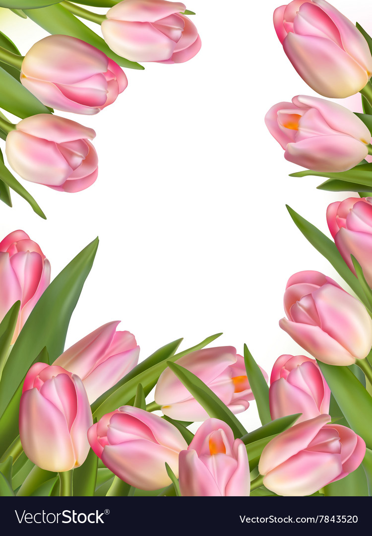 Tulip Flowers Forming An Abstract Border Eps 10 Vector Image