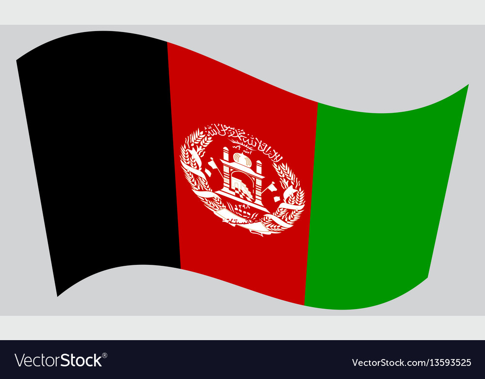 Flag of afghanistan waving on gray background vector image