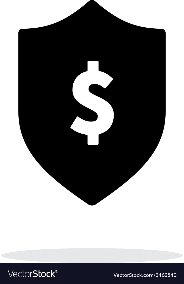 Financial security shield with dollar sign icon on vector image