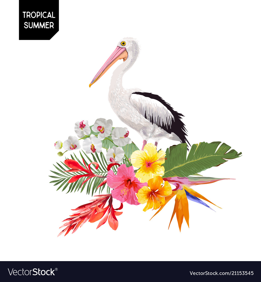 Tropical summer design with pelican bird flowers