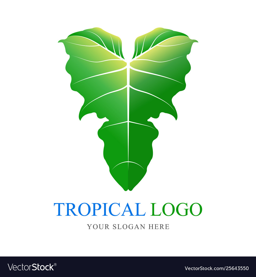 Tropical plant symbol logo green elephant ear