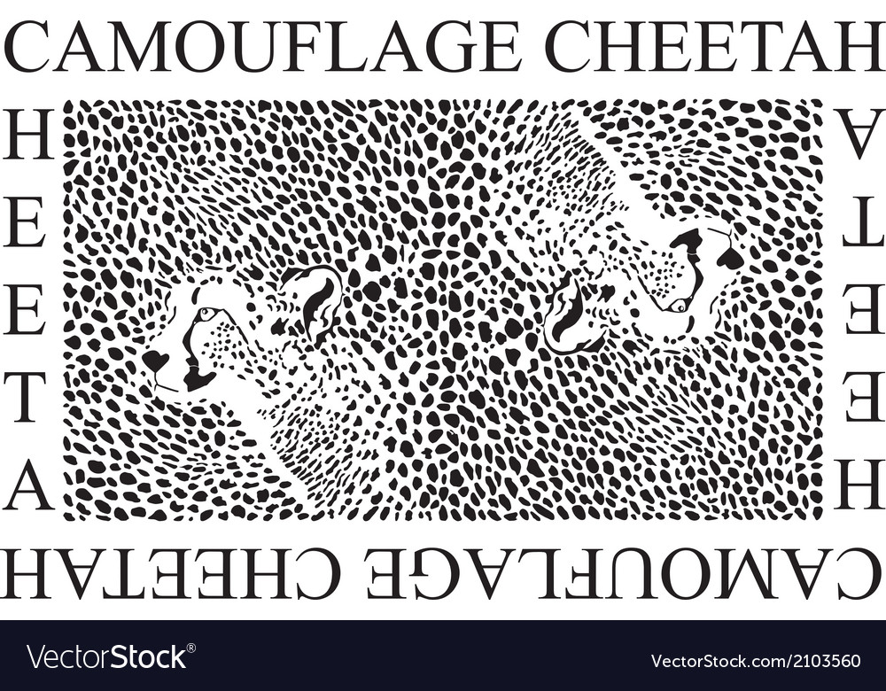 Camouflage Cheetah