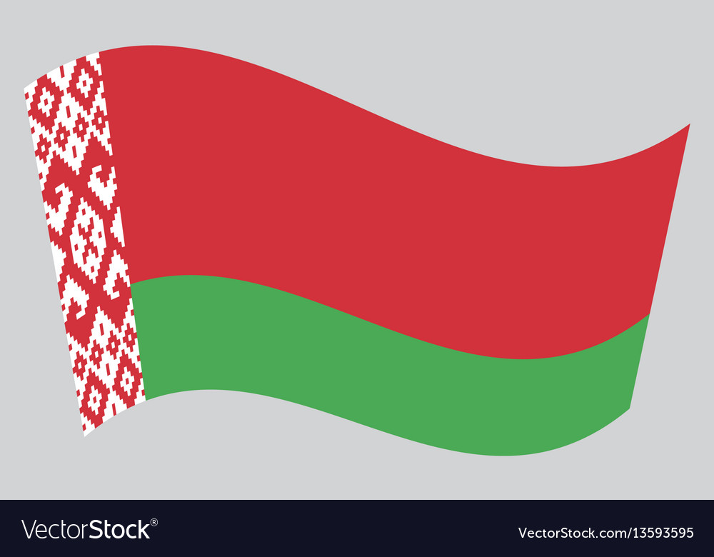 Flag of belarus waving on gray background