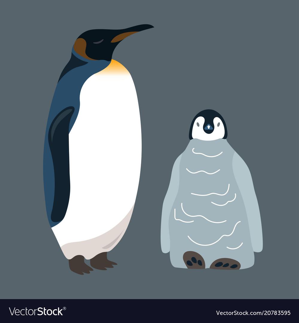 Penguin and little penguin