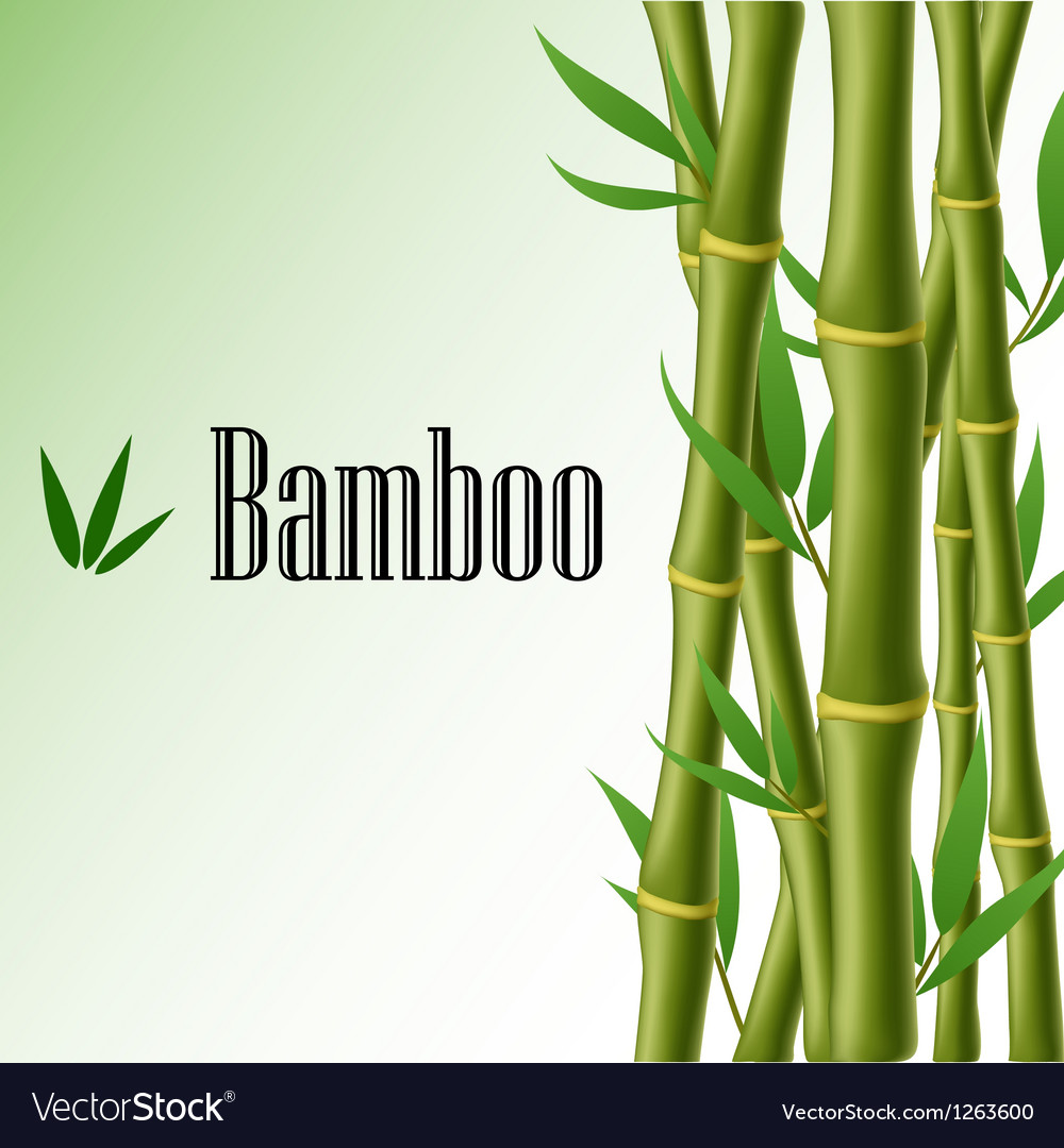 Bamboo text frame