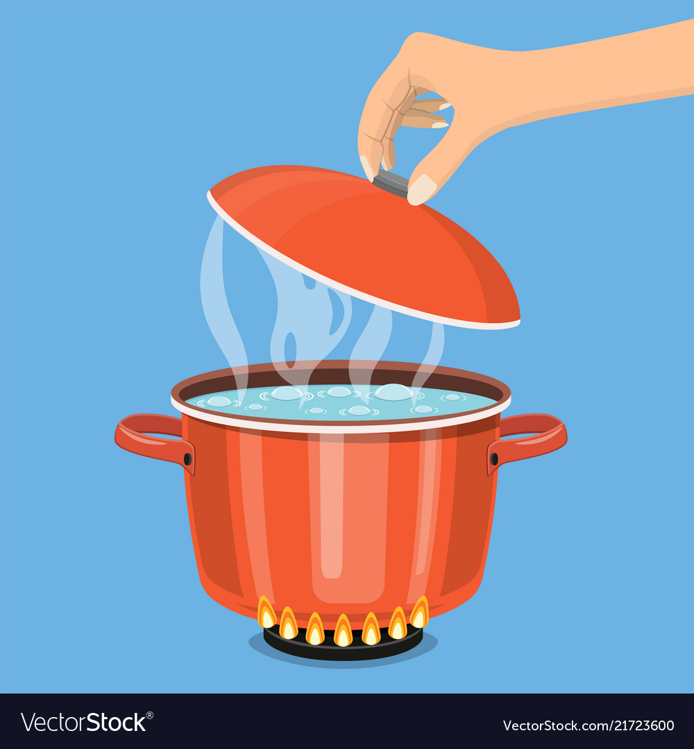 Cooking pot on stove with water and steam