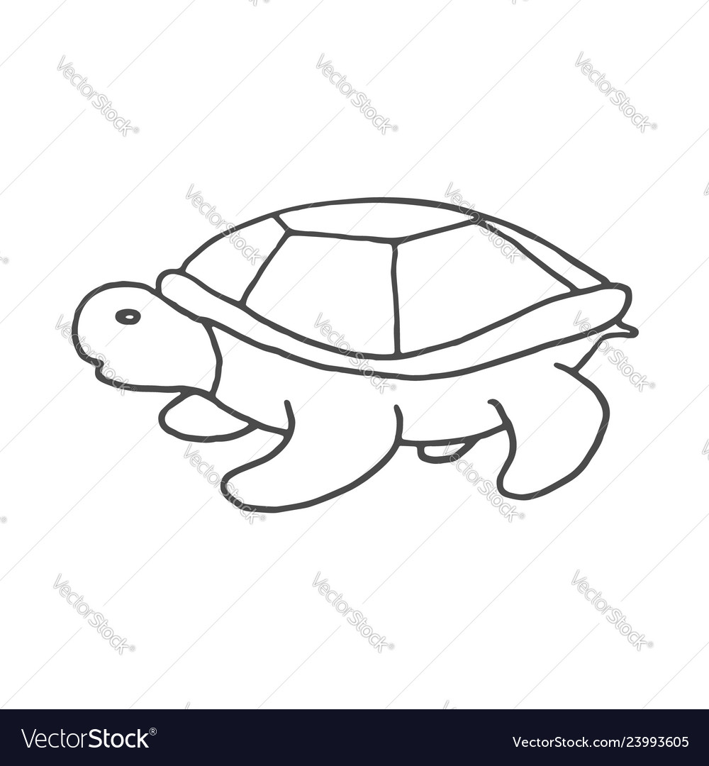 Hand drawn turtle doodle sketch style icon