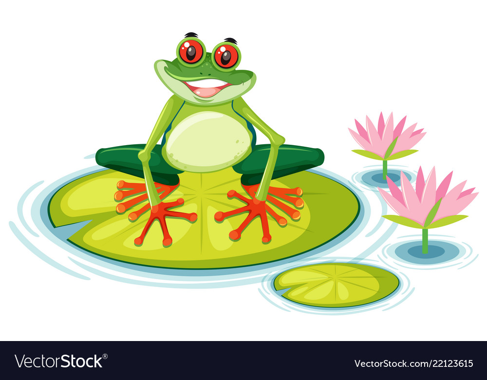 A Red Eyed Tree Frog On Lily Pad Royalty Free Vector Image Tree frog illustrations and clipart (3,458). vectorstock