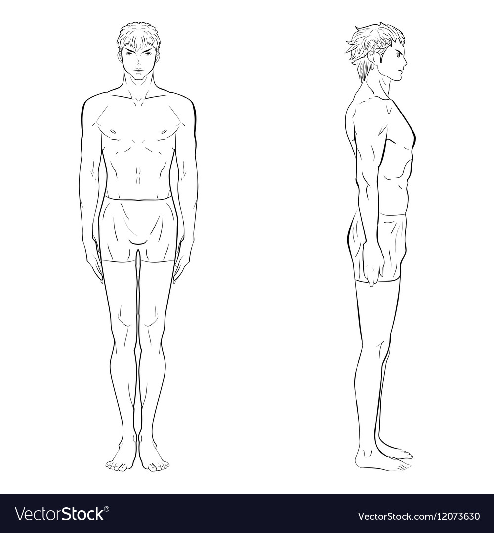 template of men figure royalty free vector image
