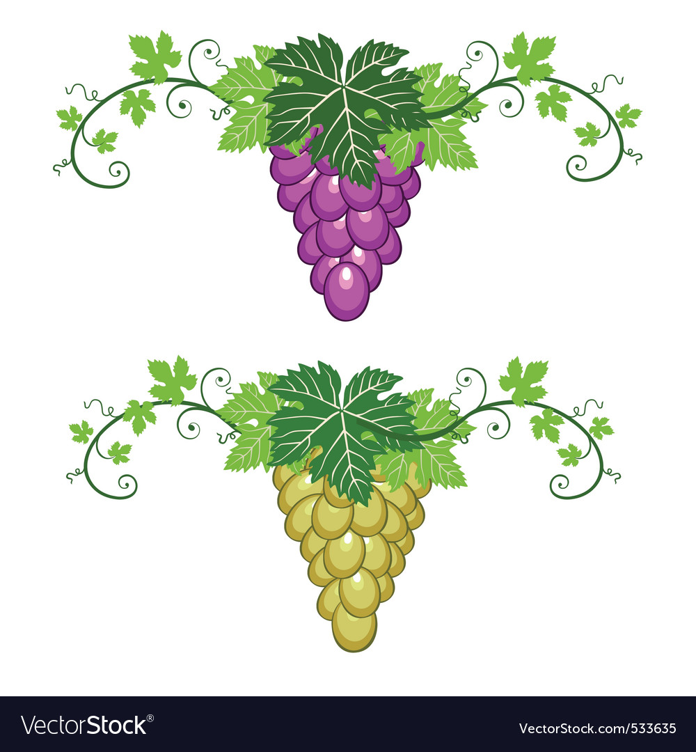 Grapes border with leaves