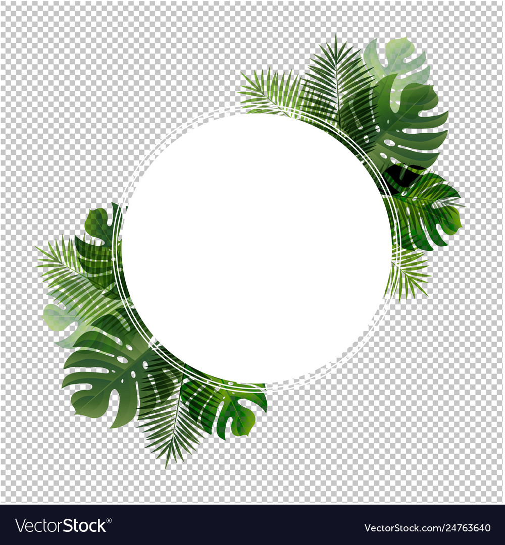 Ball Banner With Leaf Palm Transparent Background Vector Image Download transparent tropical leaves png for free on pngkey.com. vectorstock