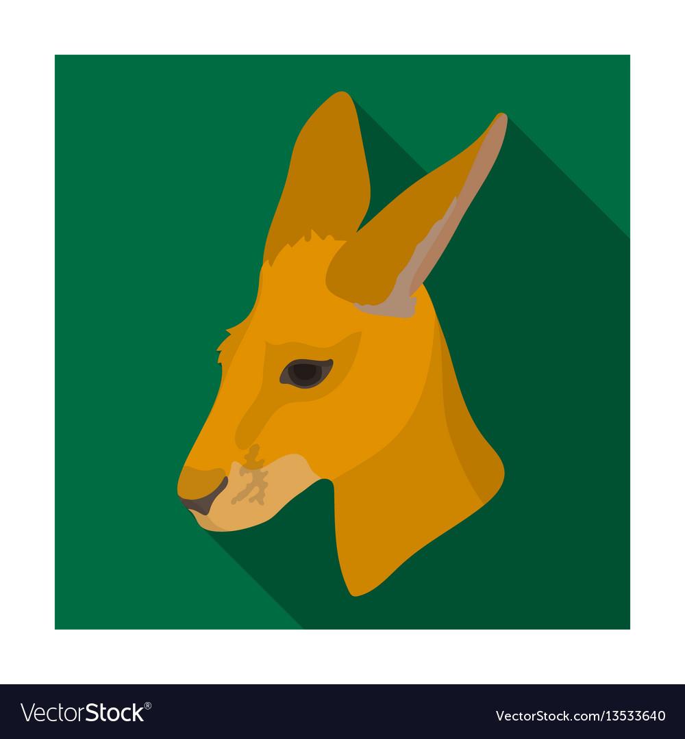 Kangaroo icon in flat style isolated on white