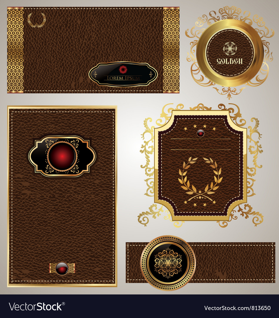 Leather banner set vector image